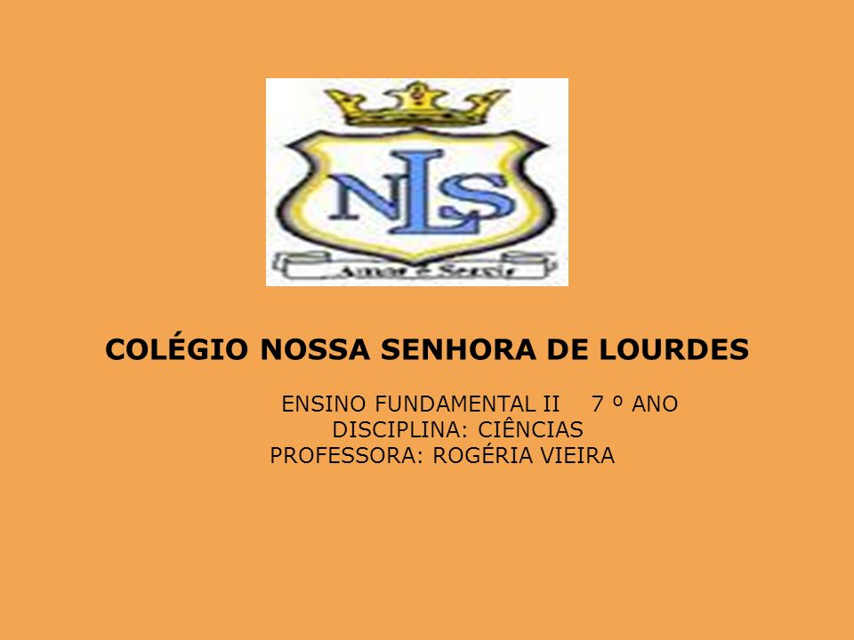 COLÉGIO NOSSA SENHORA DE LOURDES