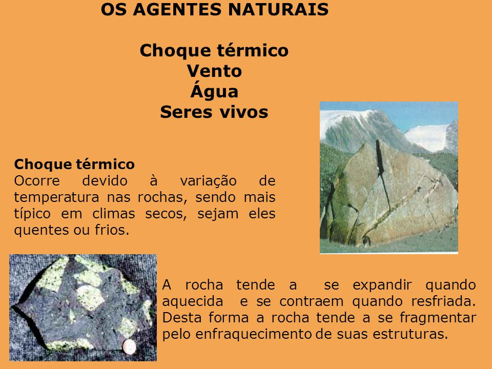 OS AGENTES NATURAIS Choque térmico Vento Água Seres vivos