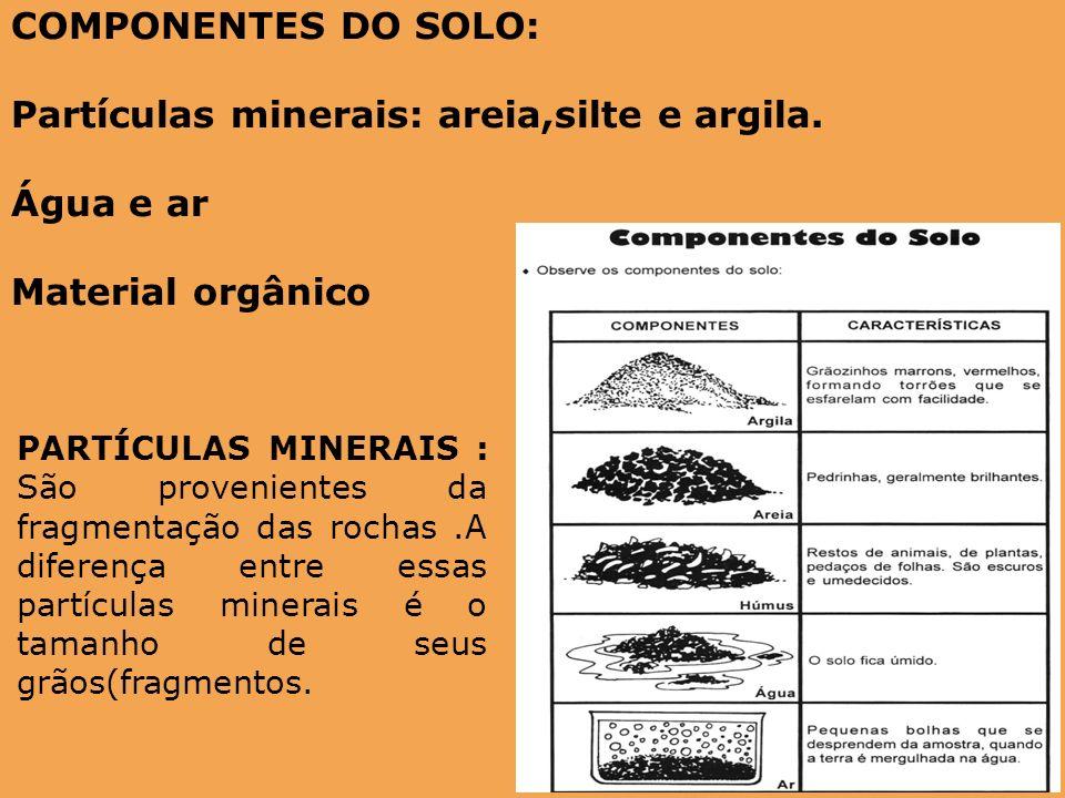 Partículas minerais: areia,silte e argila. Água e ar Material orgânico