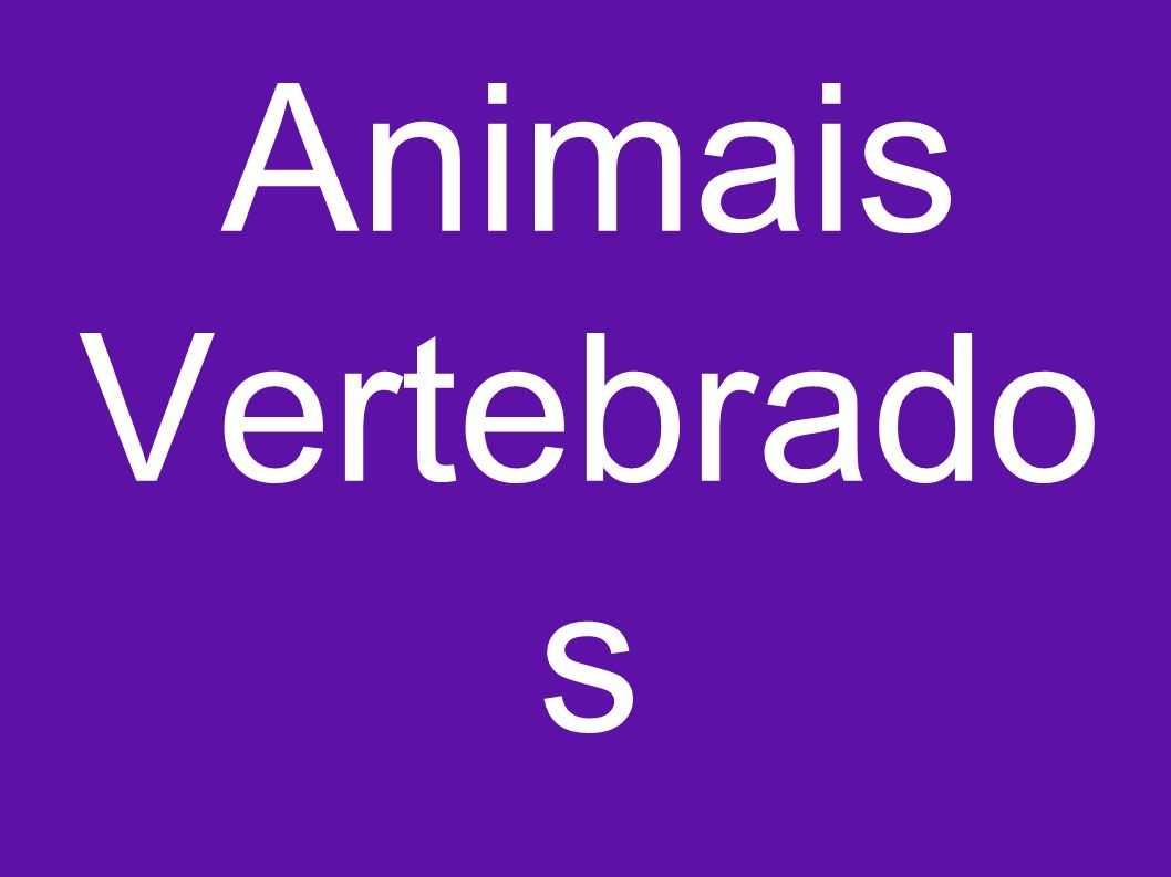 Animais Vertebrados