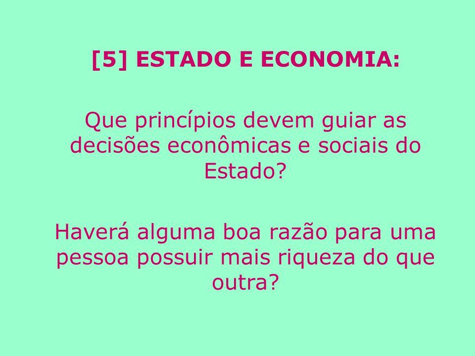 Que princípios devem guiar as decisões econômicas e sociais do Estado