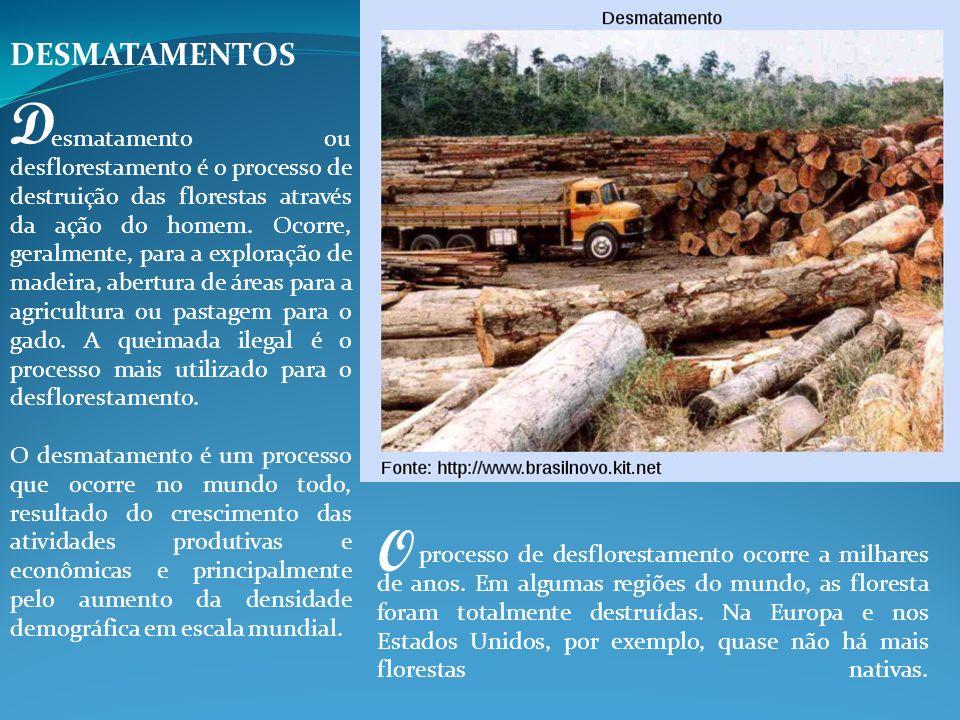 DESMATAMENTOS D.