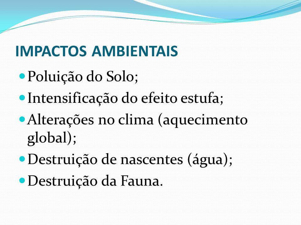IMPACTOS AMBIENTAIS Poluição do Solo; Intensificação do efeito estufa;