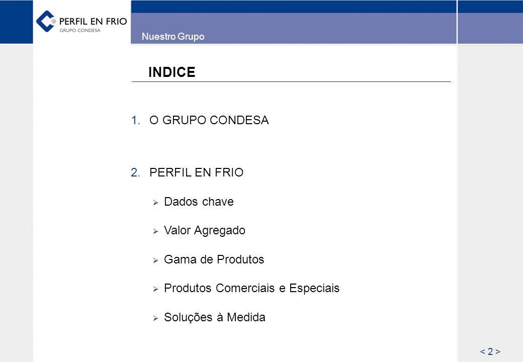 INDICE O GRUPO CONDESA PERFIL EN FRIO Dados chave Valor Agregado