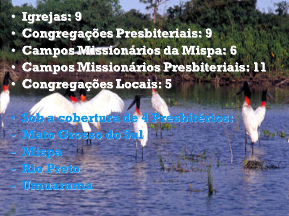 Igrejas: 9 Congregações Presbiteriais: 9. Campos Missionários da Mispa: 6. Campos Missionários Presbiteriais: 11.