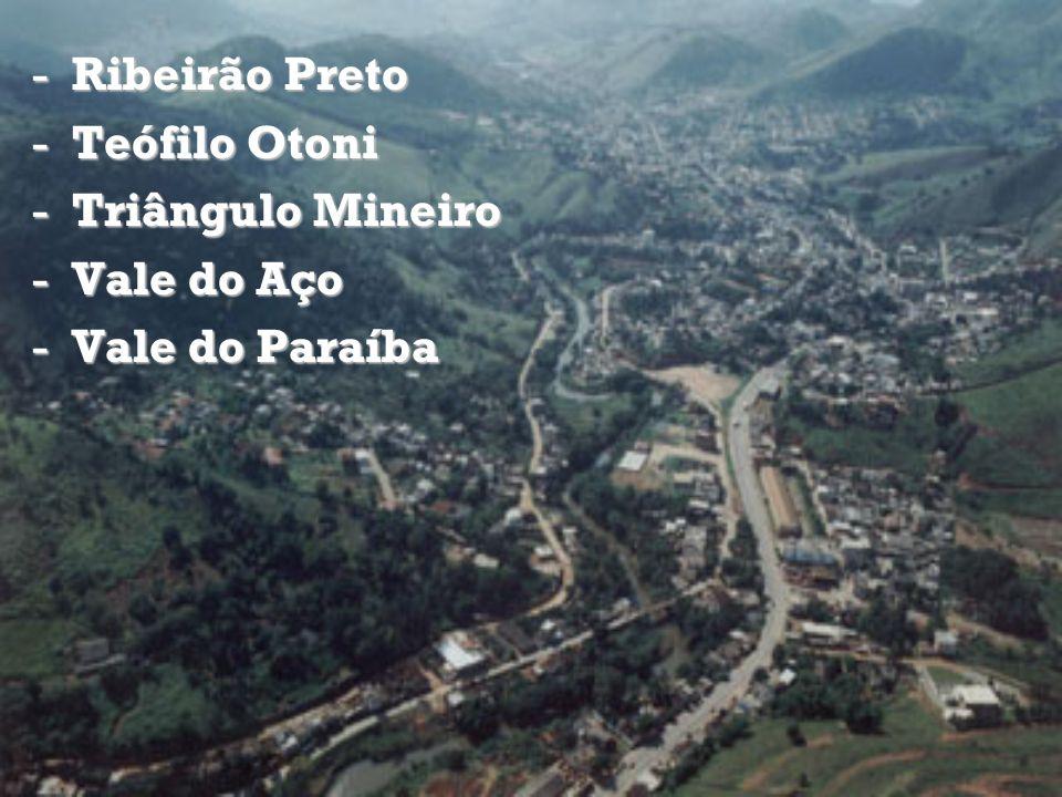 Ribeirão Preto Teófilo Otoni Triângulo Mineiro Vale do Aço Vale do Paraíba