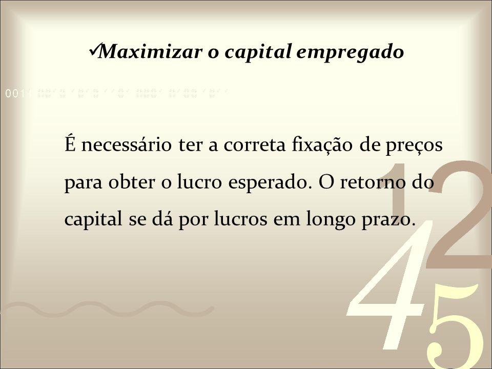Maximizar o capital empregado