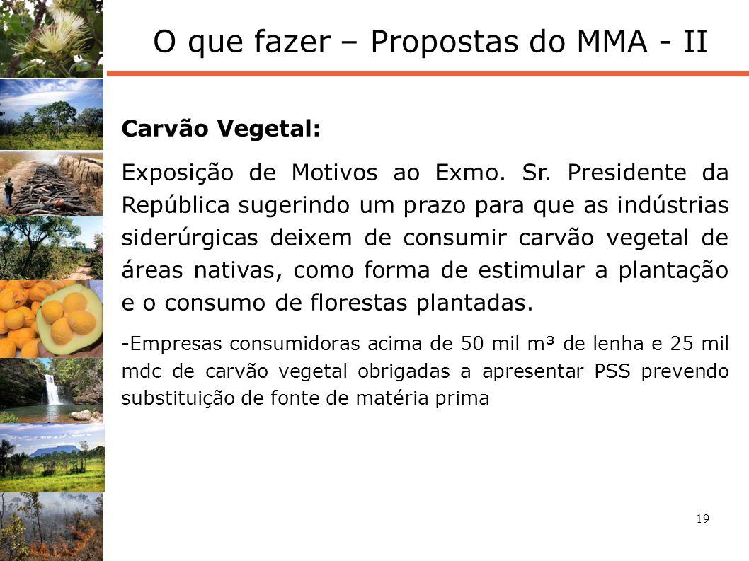 O que fazer – Propostas do MMA - II