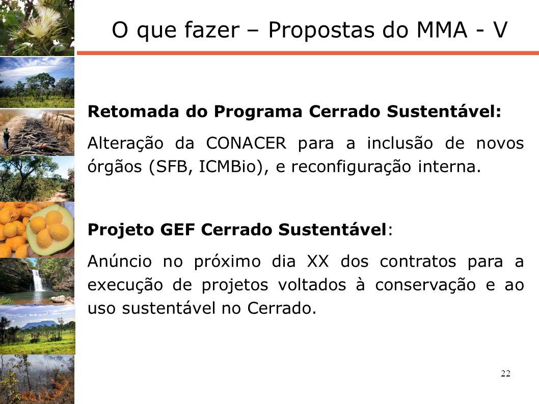 O que fazer – Propostas do MMA - V