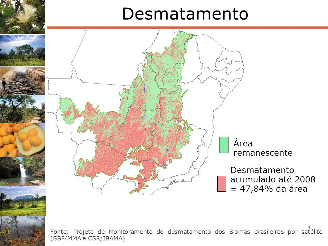 Desmatamento Área remanescente