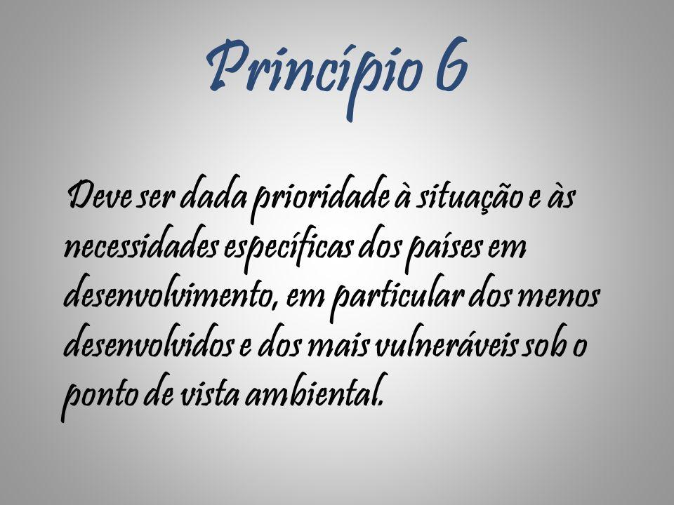 Princípio 6