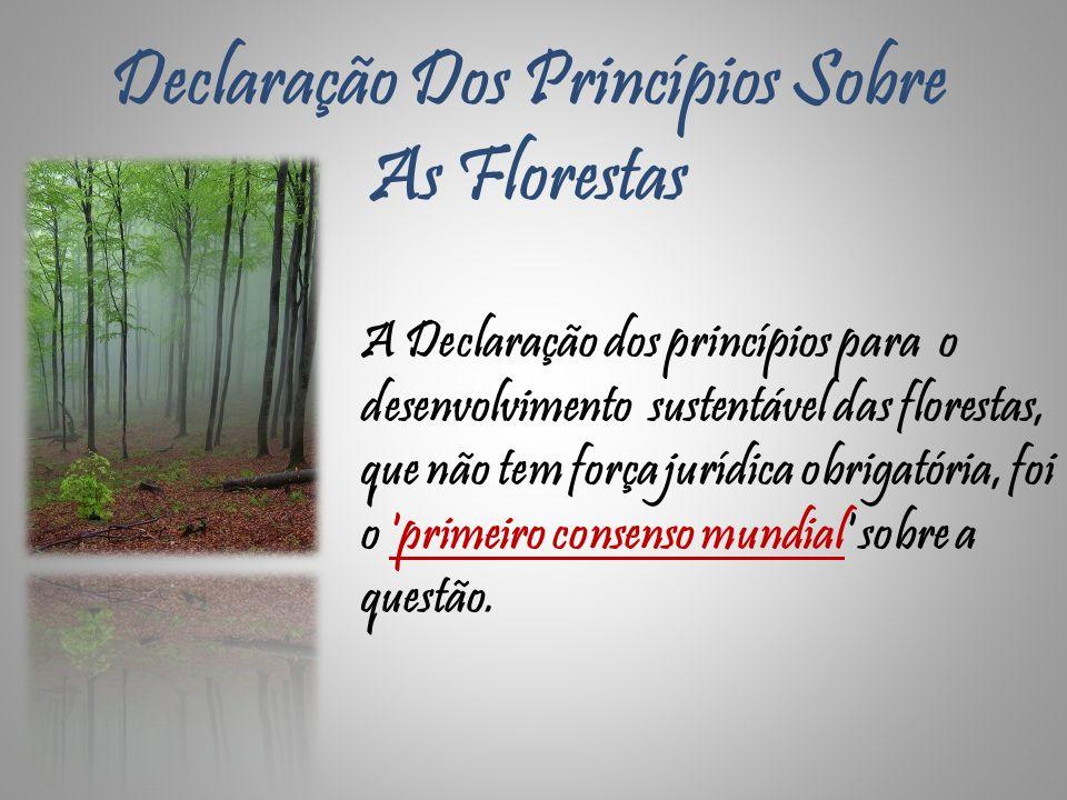 Declaração Dos Princípios Sobre As Florestas