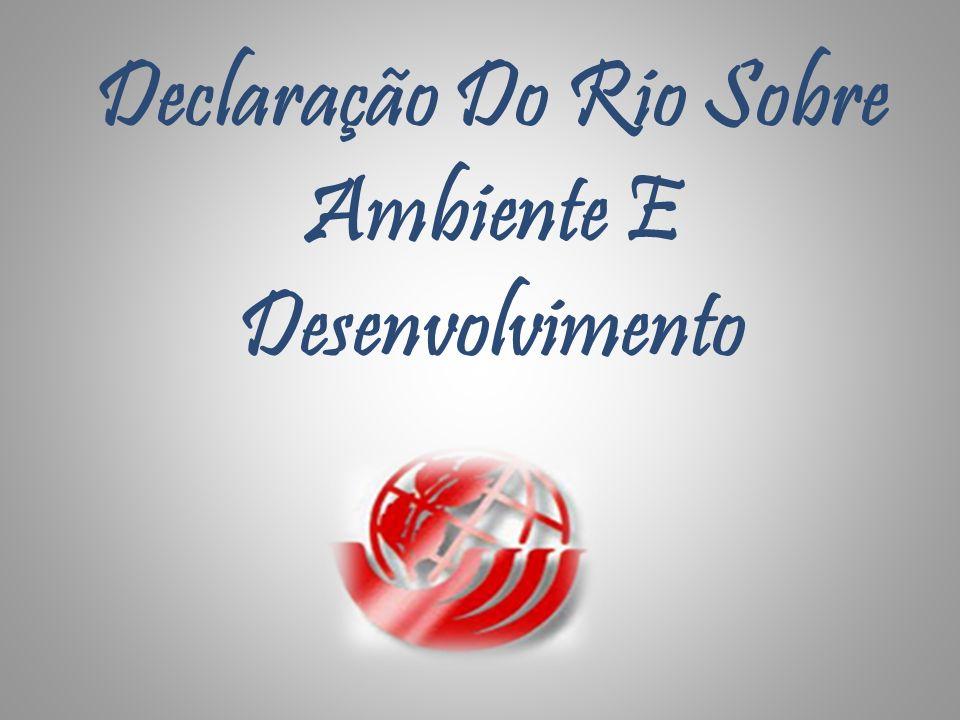Declaração Do Rio Sobre Ambiente E Desenvolvimento