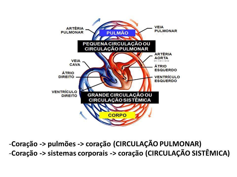 Coração -> pulmões -> coração (CIRCULAÇÃO PULMONAR)