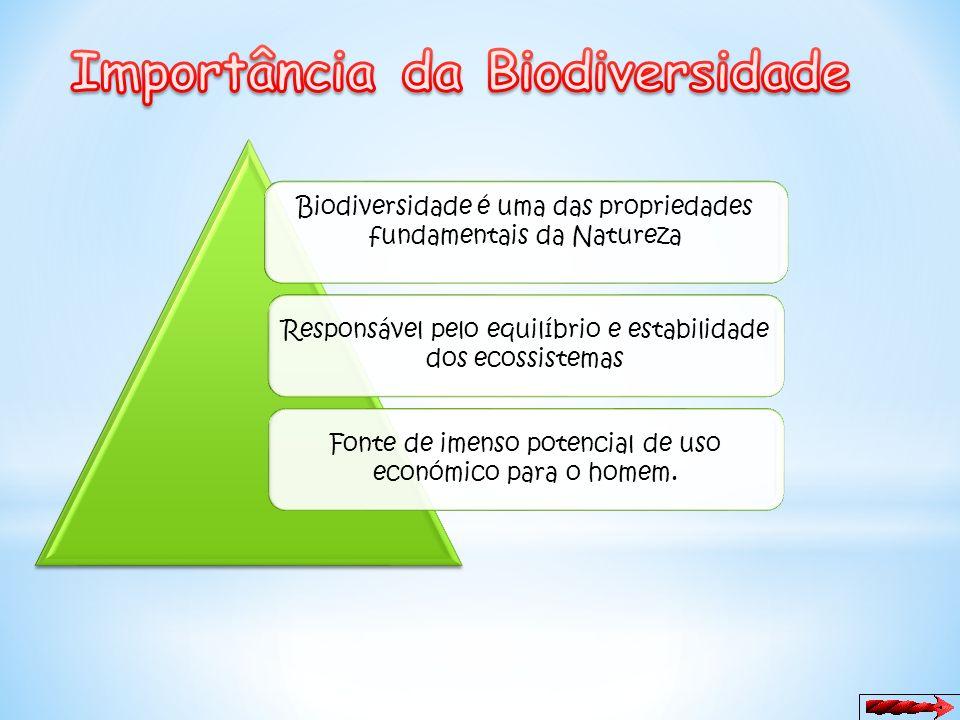 Importância da Biodiversidade