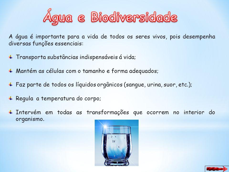 Água e Biodiversidade A água é importante para a vida de todos os seres vivos, pois desempenha diversas funções essenciais: