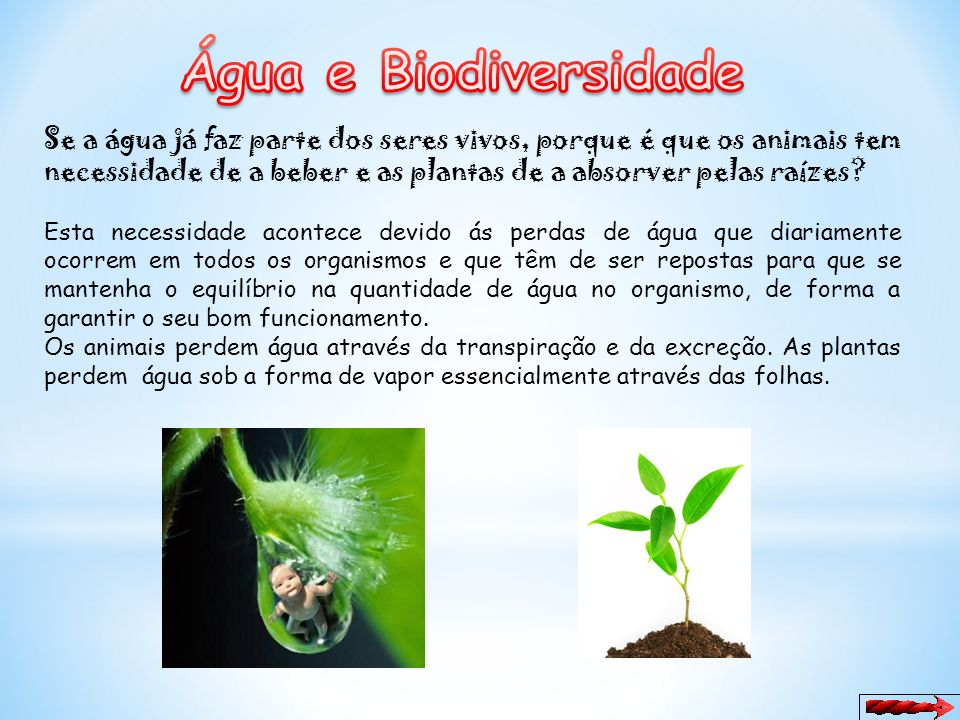 Água e Biodiversidade