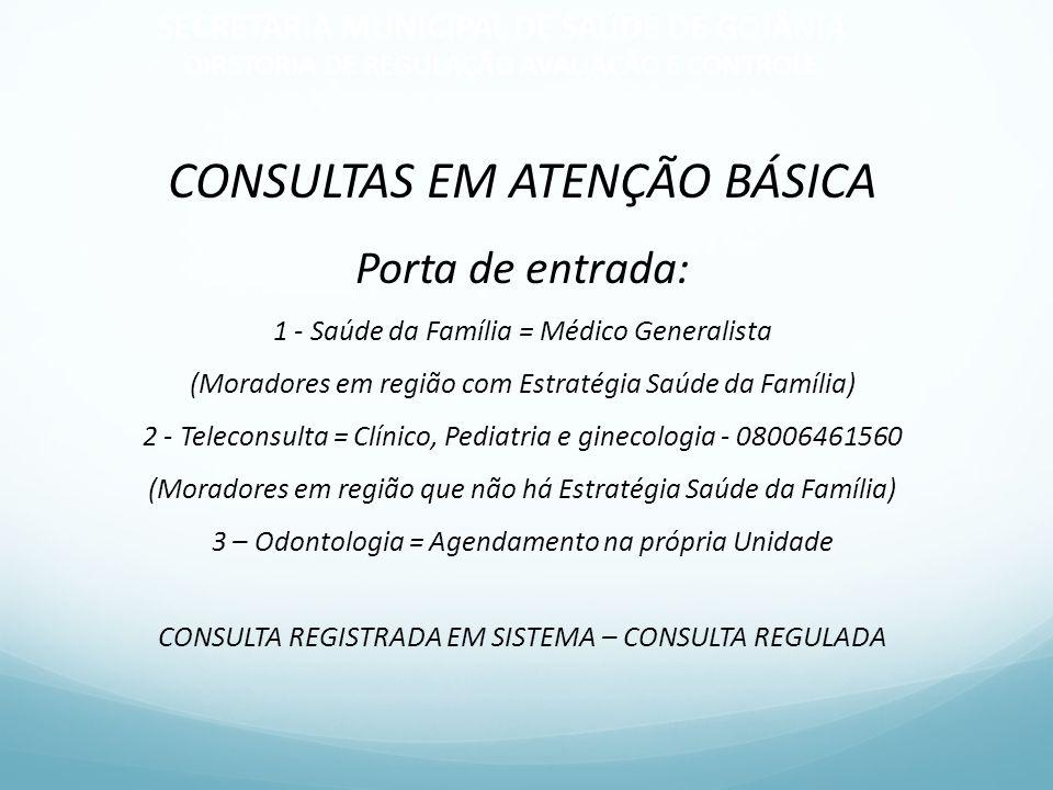 CONSULTAS EM ATENÇÃO BÁSICA