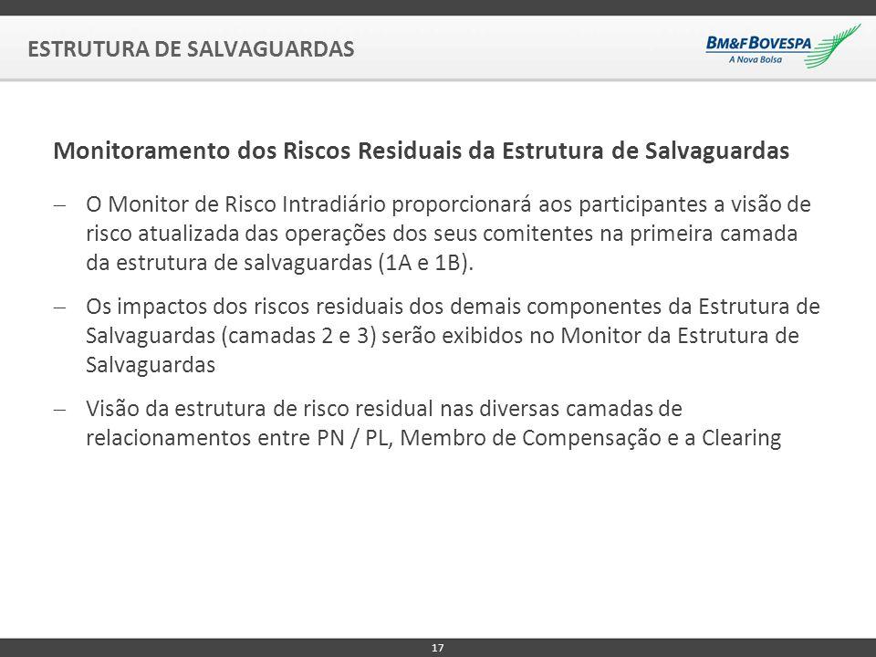 Monitoramento dos Riscos Residuais da Estrutura de Salvaguardas