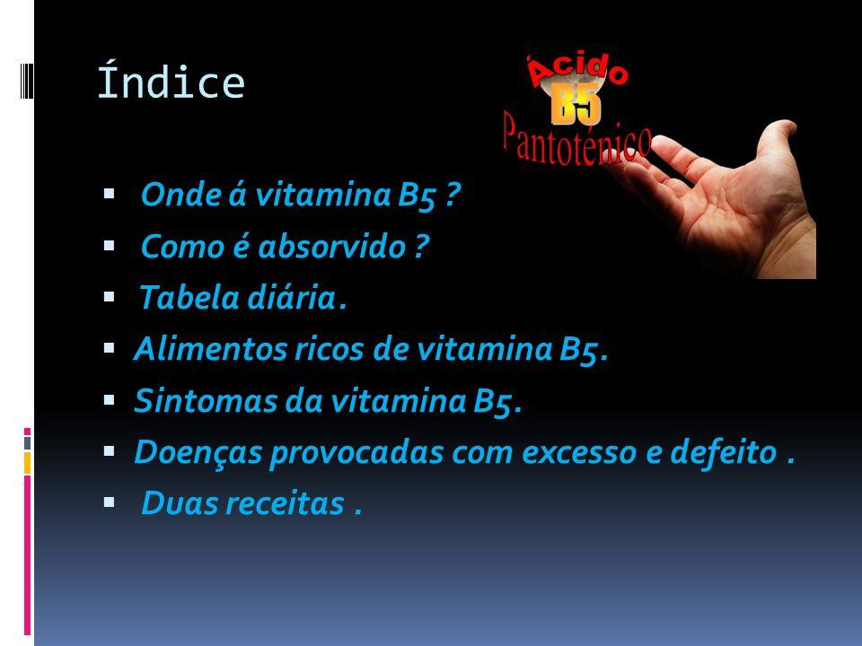 Índice Onde á vitamina B5 Como é absorvido Tabela diária.