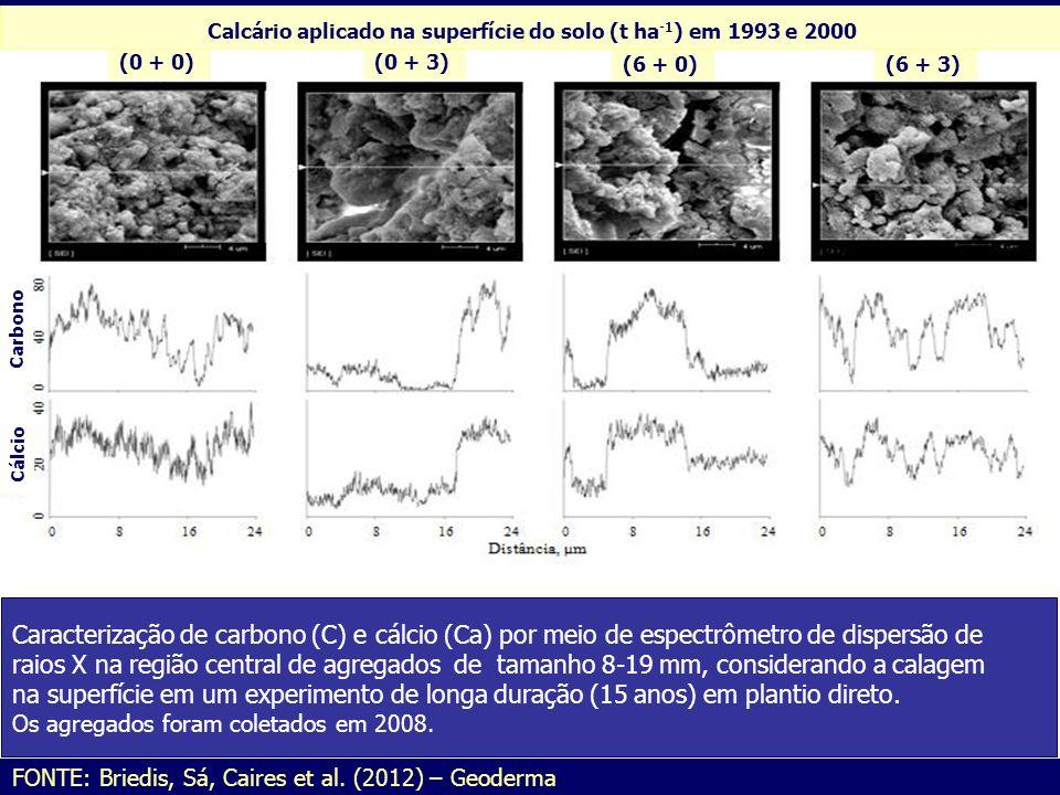 Calcário aplicado na superfície do solo (t ha-1) em 1993 e 2000