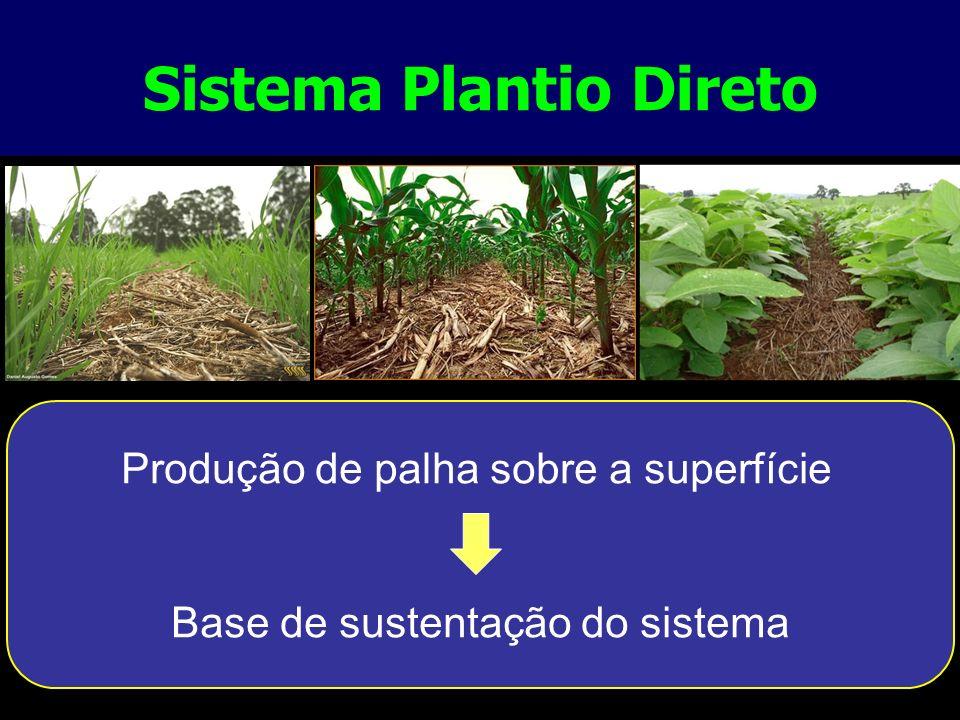 Sistema Plantio Direto