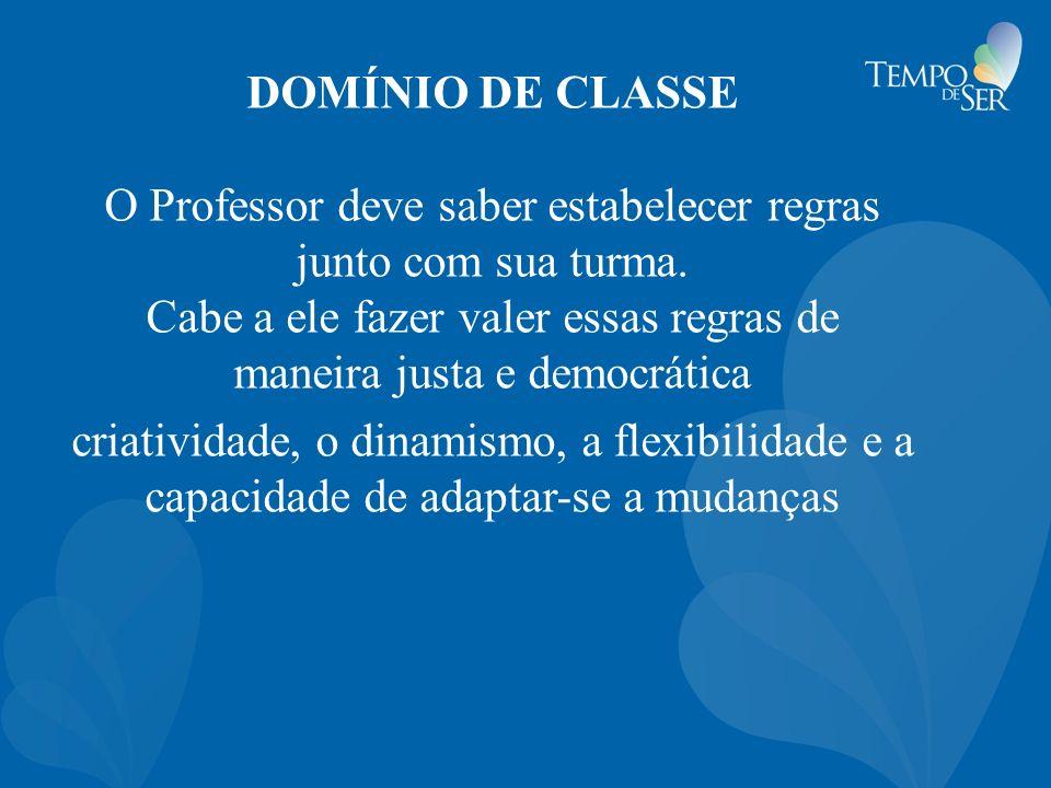 DOMÍNIO DE CLASSE O Professor deve saber estabelecer regras junto com sua turma.