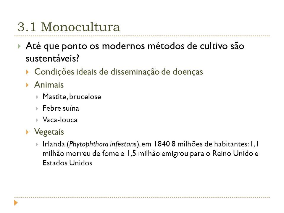 3.1 Monocultura Até que ponto os modernos métodos de cultivo são sustentáveis Condições ideais de disseminação de doenças.