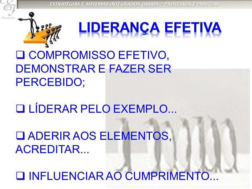 LIDERANÇA EFETIVA COMPROMISSO EFETIVO, DEMONSTRAR E FAZER SER PERCEBIDO; LÍDERAR PELO EXEMPLO... ADERIR AOS ELEMENTOS, ACREDITAR...
