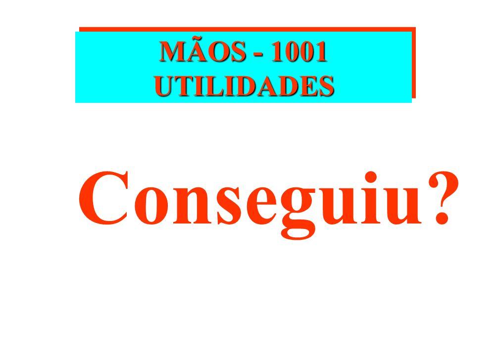 MÃOS - 1001 UTILIDADES Conseguiu
