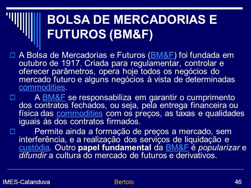 BOLSA DE MERCADORIAS E FUTUROS (BM&F)