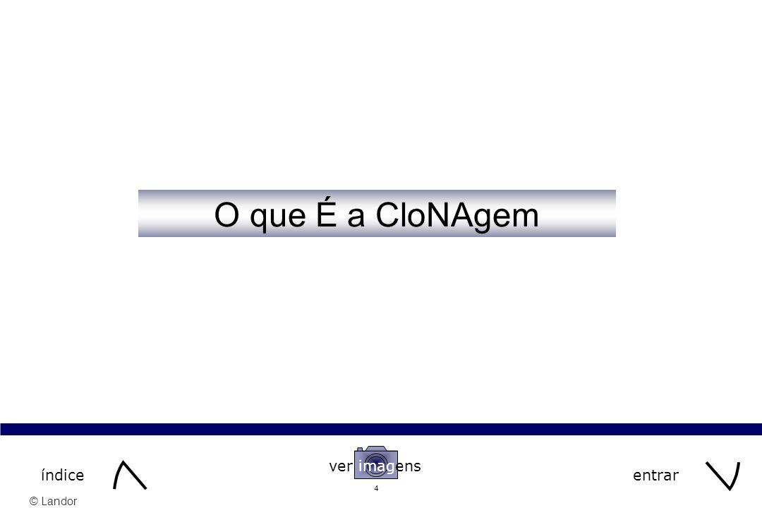 30/03/2017 O que É a CloNAgem ver imagens índice entrar 3