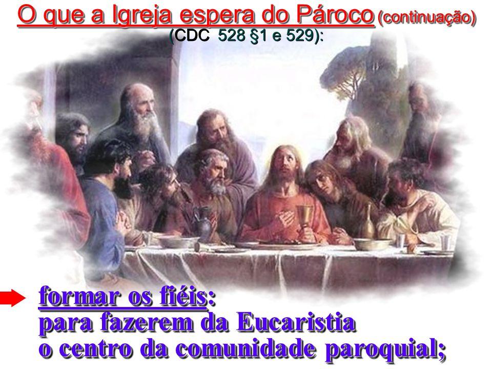 O que a Igreja espera do Pároco (continuação) (CDC 528 §1 e 529):