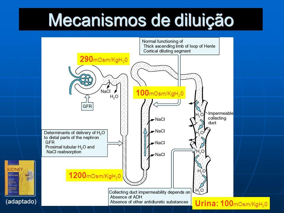 Mecanismos de diluição