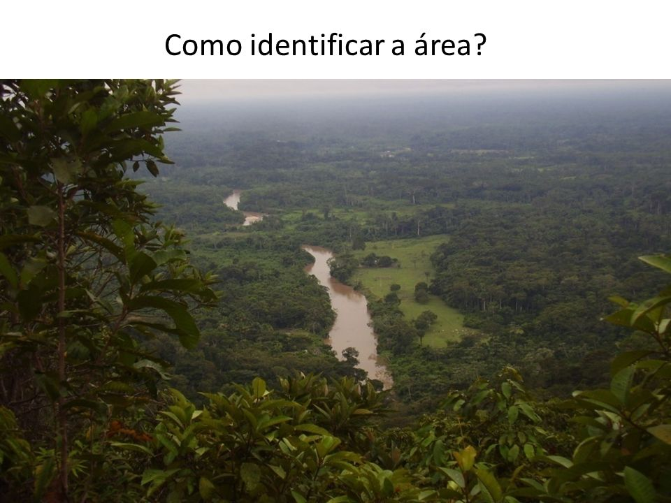 Como identificar a área