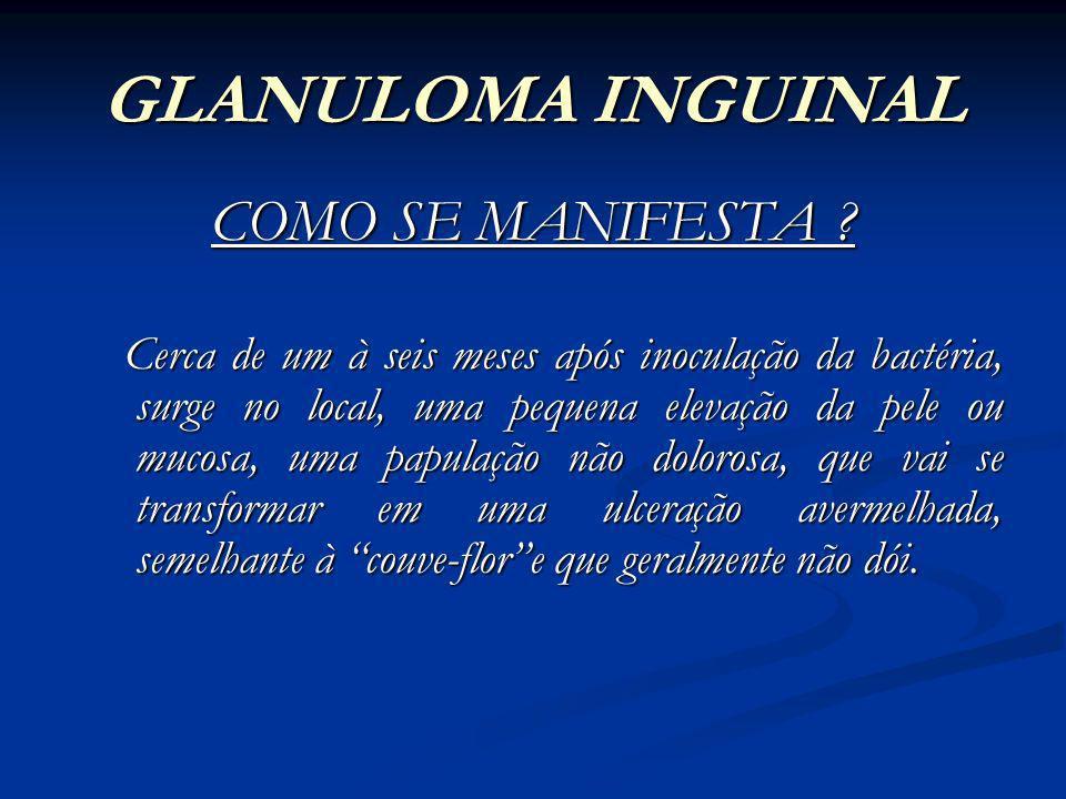 GLANULOMA INGUINAL COMO SE MANIFESTA