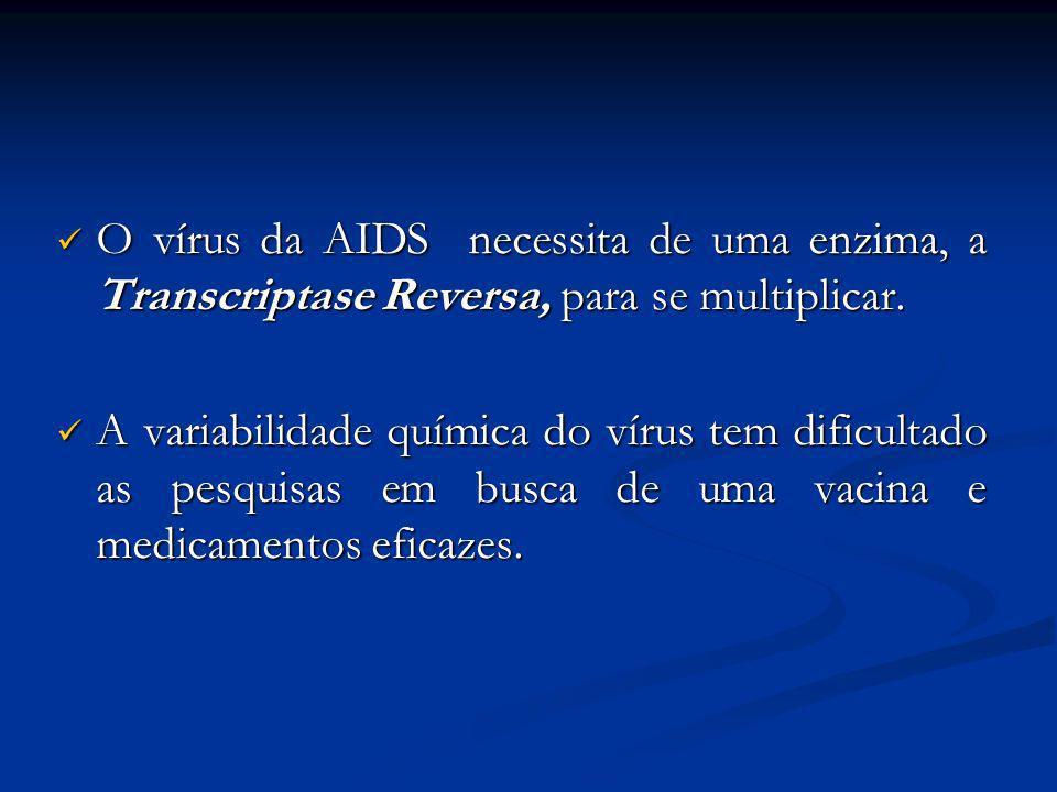 O vírus da AIDS necessita de uma enzima, a Transcriptase Reversa, para se multiplicar.