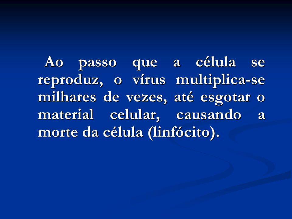 Ao passo que a célula se reproduz, o vírus multiplica-se milhares de vezes, até esgotar o material celular, causando a morte da célula (linfócito).