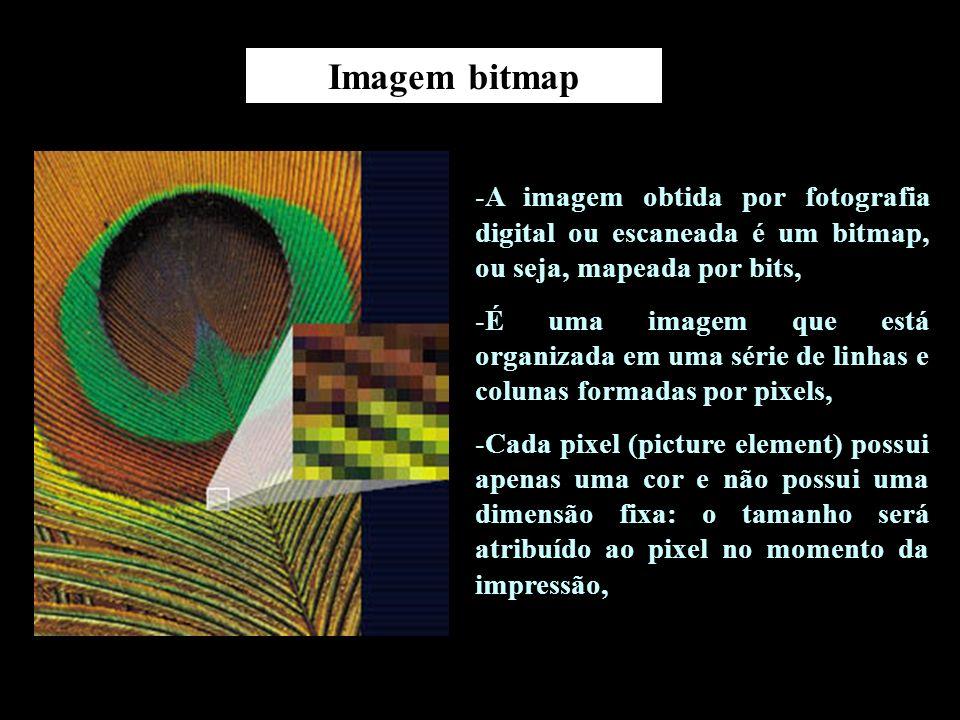 Imagem bitmap A imagem obtida por fotografia digital ou escaneada é um bitmap, ou seja, mapeada por bits,