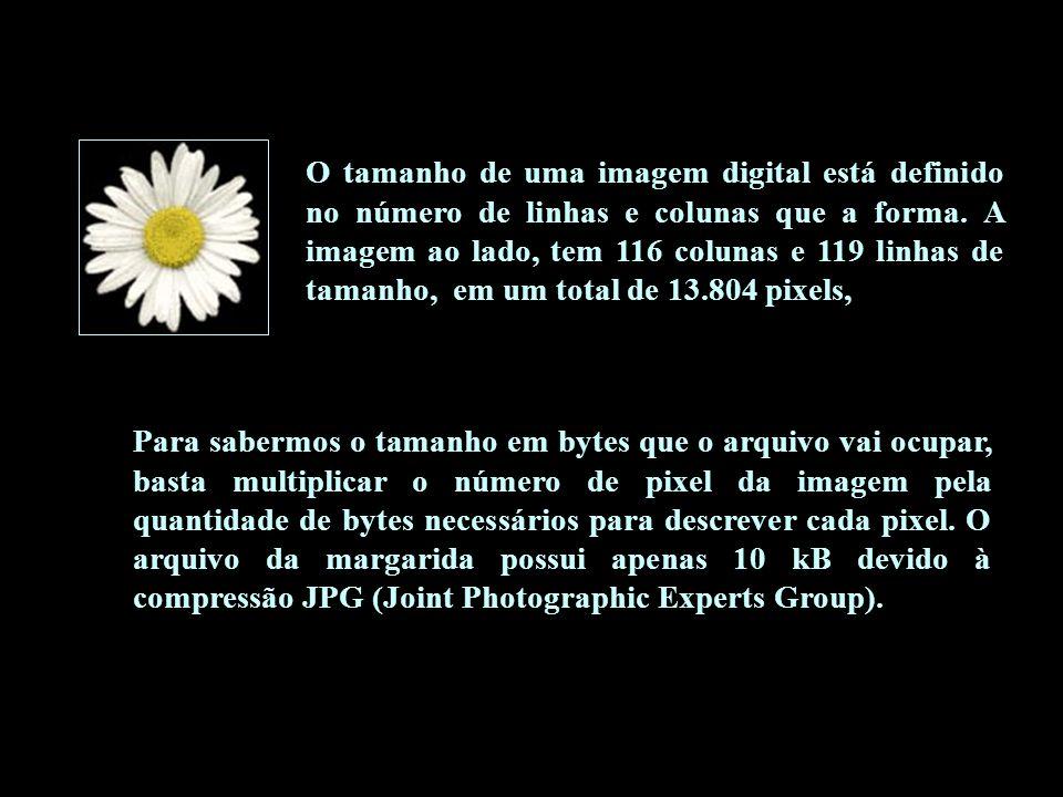 O tamanho de uma imagem digital está definido no número de linhas e colunas que a forma. A imagem ao lado, tem 116 colunas e 119 linhas de tamanho, em um total de 13.804 pixels,