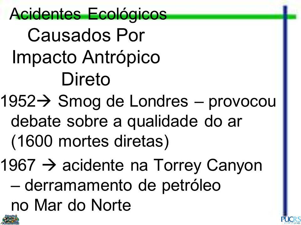 Acidentes Ecológicos Causados Por Impacto Antrópico Direto