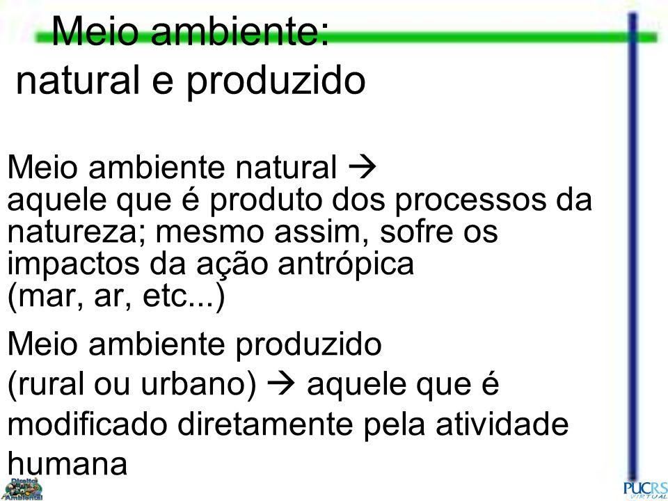 Meio ambiente: natural e produzido