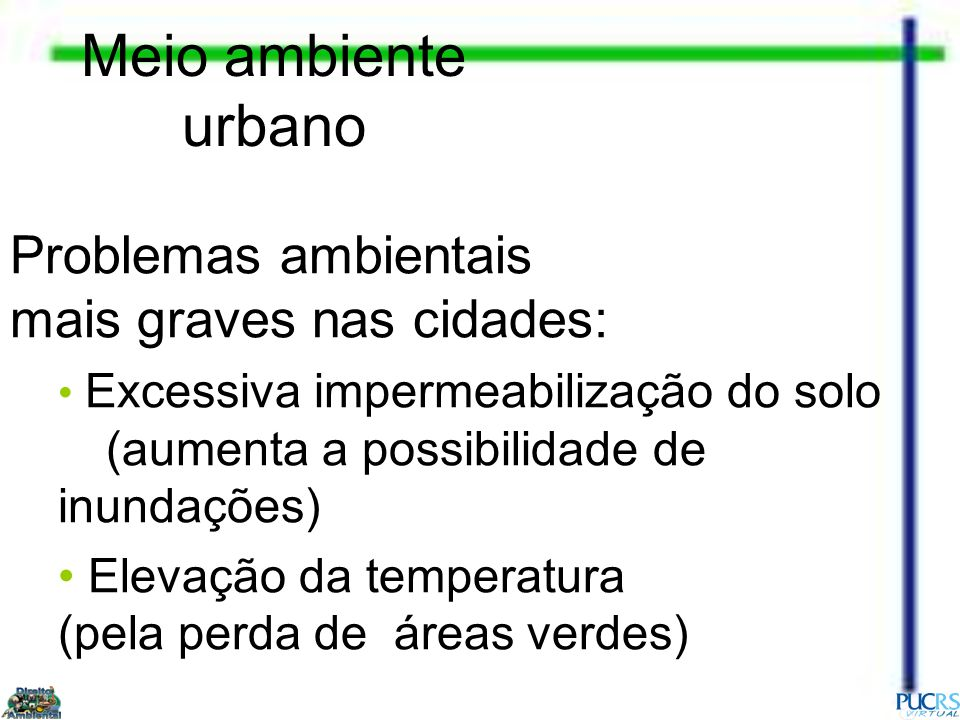 Meio ambiente urbano Problemas ambientais mais graves nas cidades:
