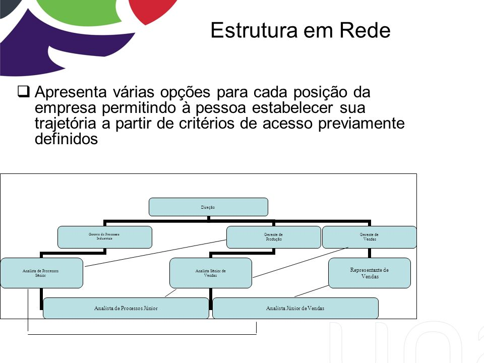 Estrutura em Rede