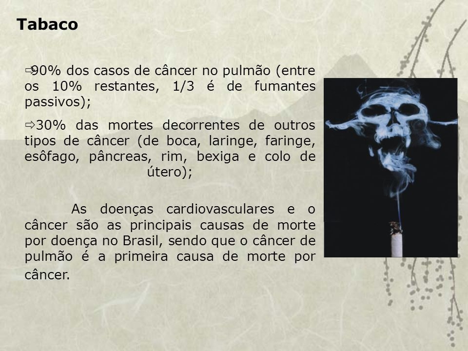 Tabaco 90% dos casos de câncer no pulmão (entre os 10% restantes, 1/3 é de fumantes passivos);