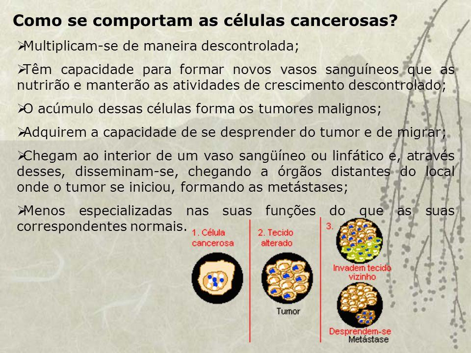 Como se comportam as células cancerosas