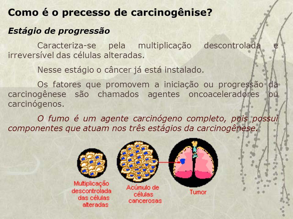 Como é o precesso de carcinogênise