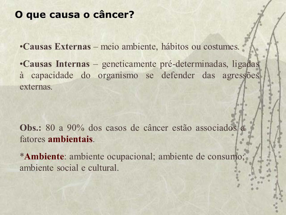 O que causa o câncer Causas Externas – meio ambiente, hábitos ou costumes.