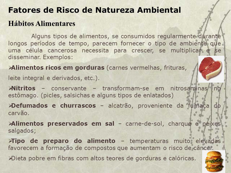 Fatores de Risco de Natureza Ambiental