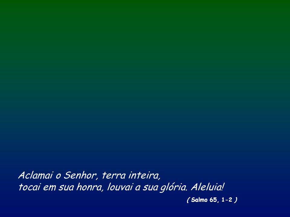 Aclamai o Senhor, terra inteira, tocai em sua honra, louvai a sua glória. Aleluia! ( Salmo 65, 1-2 )